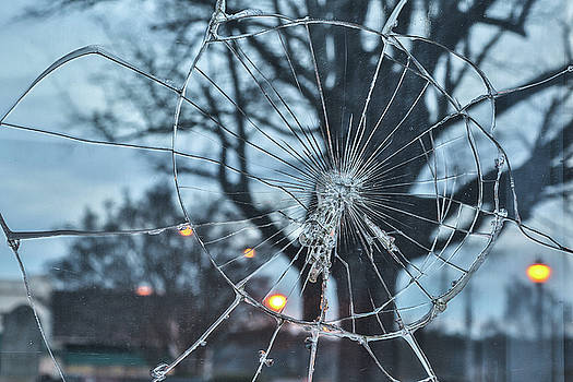 Glass Web by Jimmy McDonald