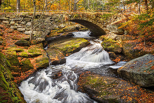 Gleason Falls Stone Arch Morning by Shell Ette
