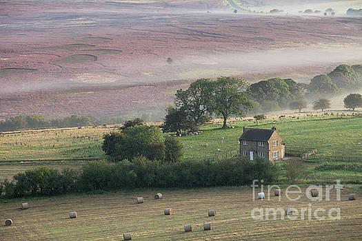 Glebe Farm on Saltergate Moor by Gavin Dronfield