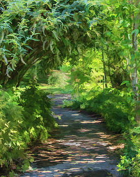 Glen Ellen Garden Path by Jan Hagan
