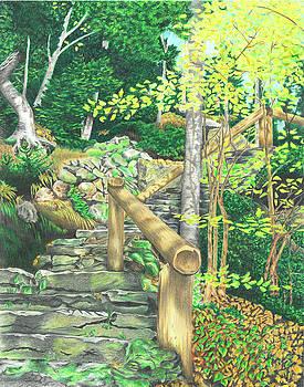 Glen Ellis Falls by Troy Levesque
