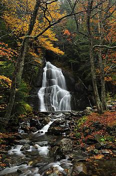 Glen Moss Falls by Mandy Wiltse