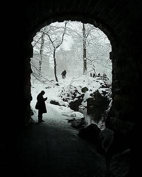 Karin Kohlmeier - Glen Span Arch in Central Park