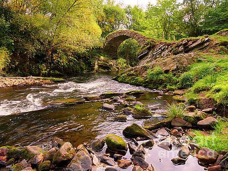 Glenlivet packhorse bridge in Cairngorms National Park Scotland by Louise Heusinkveld