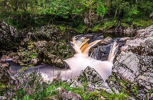 Glentrool Rivers And Falls by David Attenborough