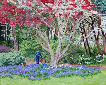 Glenveagh Castle Garden, County Donegal, Ireland by Jeannie Allerton