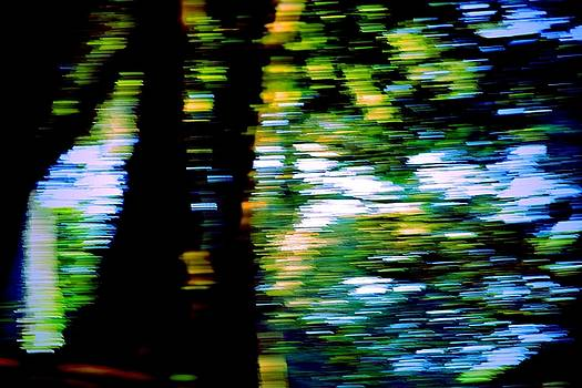 Glimpse of the river light by Valerie Dauce