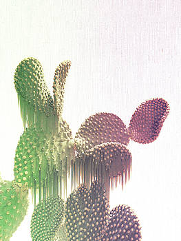 Glitch Cactus by Emanuela Carratoni