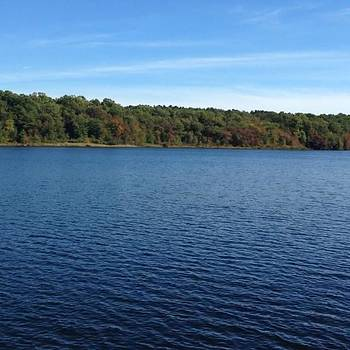 Glocester Lake, Part 2  look How Clear by Lisa Pearlman