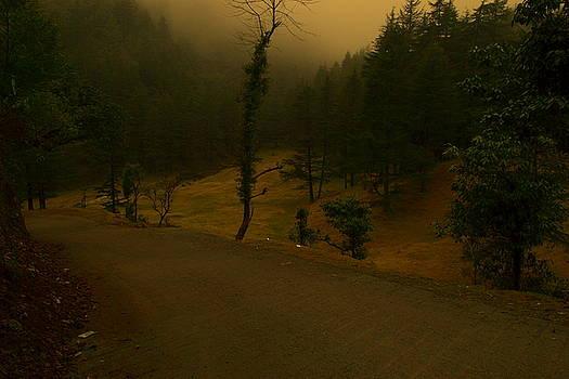 Gloomy day by Salman Ravish