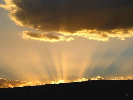 Glorious Sunburst 2 by Will Borden