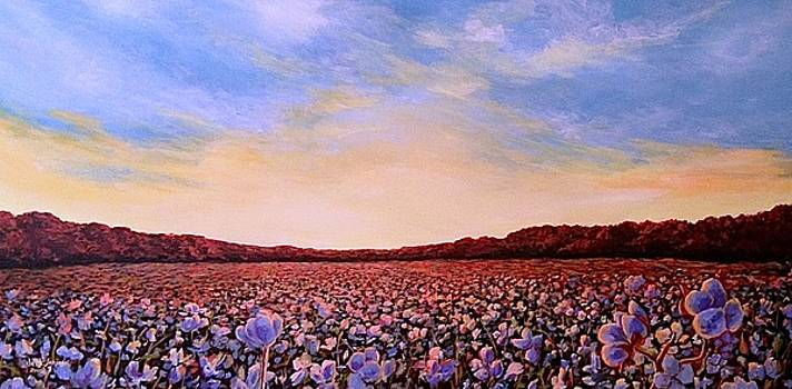 Glory of Cotton by Jeanette Jarmon