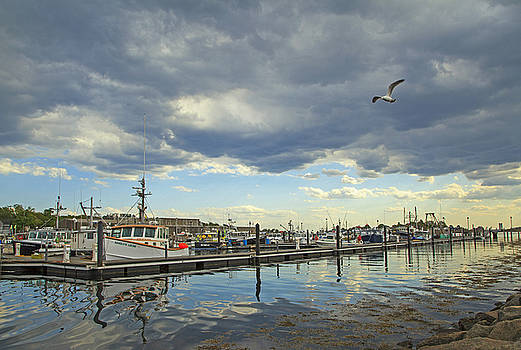 Gloucester State Fish Pier by Elaine Somers