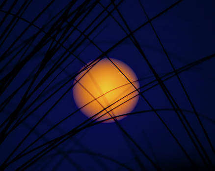 Glow of the Super Moon by Mark Andrew Thomas