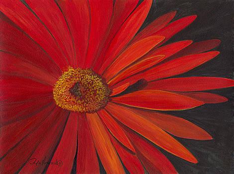 Phyllis Howard - Glowing Gerber