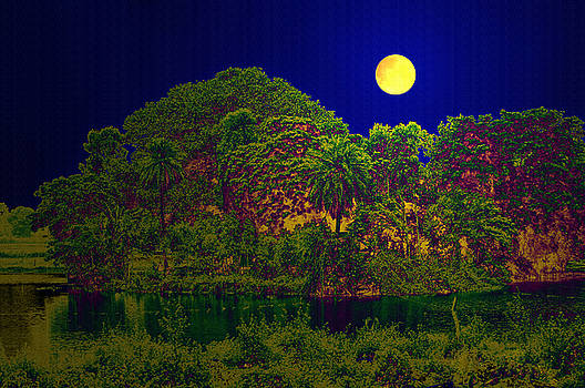 Bliss Of Art - Glowing Nature