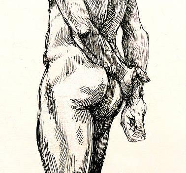 Gluteus Maximus by Roz McQuillan