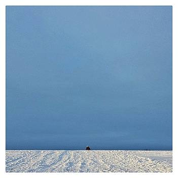 Go Big by David Oakill