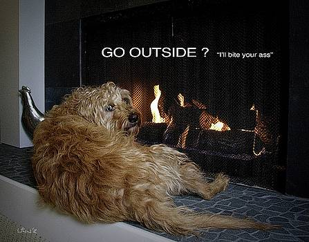 Bill Linn - Go Outside ?