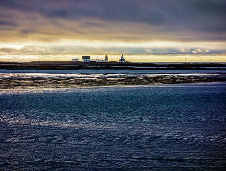 Goat Island Light by Gary Shepard