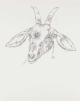 Goat by Karen Robey