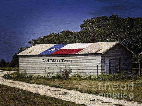 God Bless Texas  by Ella Kaye Dickey