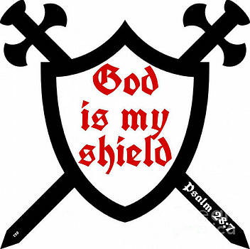 God Is My Shield by Robert ONeil