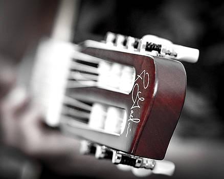 Godin Guitar by J Austin