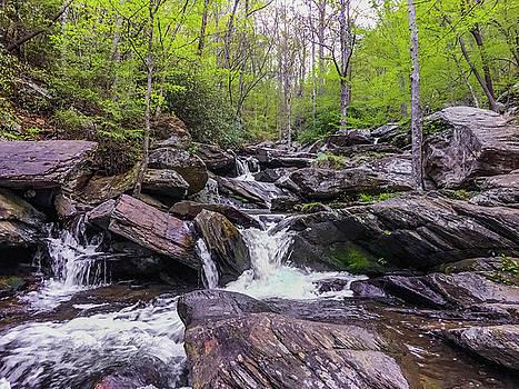 Goforth Creek by Kelly Kennon