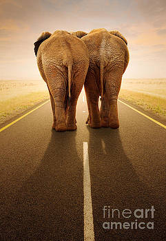Going away together / travelling by road by Johan Swanepoel