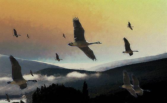 Going south by John Stuart Webbstock