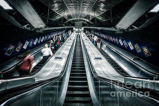 Going Underground by Evelina Kremsdorf