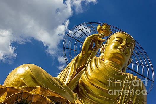 Gold Buddha by Christos Koudellaris