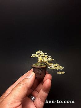 Gold cascade wire bonsai tree sculpture by Ken To  by Ken To