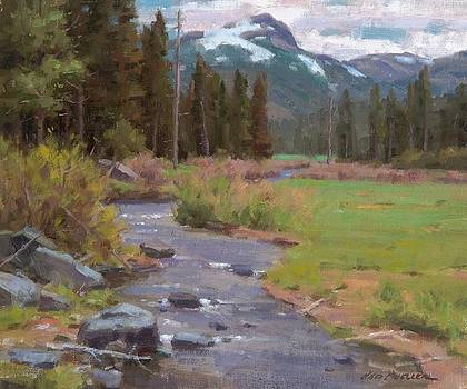 Gold Creek Spring by Ned Mueller