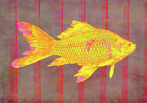 Gold Fish on Striped Background by Mimulux patricia No