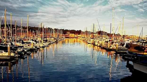Gold Light, Monterey Marina by Flying Z Photography by Zayne Diamond