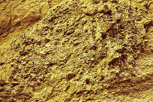 Gold Natural Texture by Evgeniya Lystsova