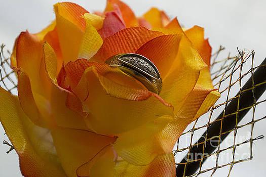 Gold ring on a flower by Sonya Staneva