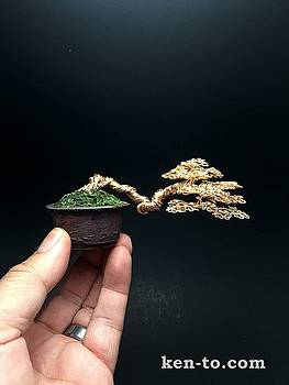 Gold semicascade wire bonsai tree by Ken To by Ken To