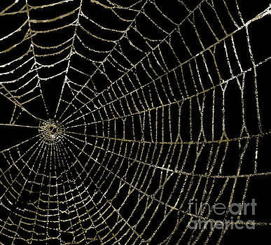 Gold Spider Web Fashion Halloween by Mindy Sommers