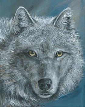 Gold Wolf by Christine StPierre