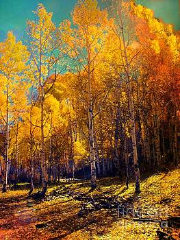 Golden Aspens by Annie Gibbons