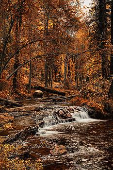 Saija Lehtonen - Golden Autumn Falls