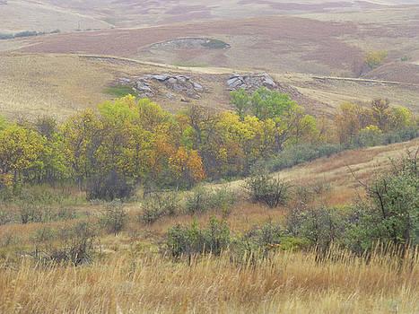Golden Autumn in Dakota by Cris Fulton