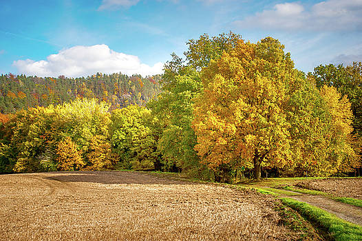 Jenny Rainbow - Golden Autumn