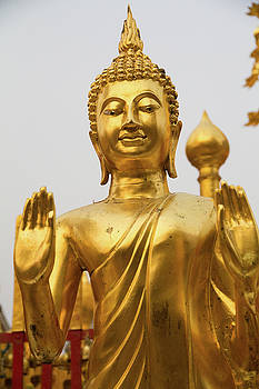 Golden Buddha by Emily M Wilson