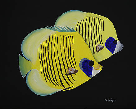 Golden Butterflyfish by John Edebohls