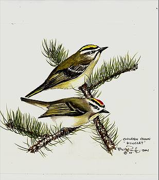 Golden Crown Kinglet by Bob Patterson