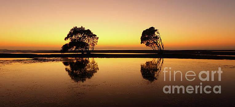 Golden dawn by Howard Ferrier